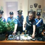 DETENEVA IN CASA HASHISH E MARIJUANA